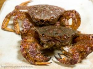 生きてる栗蟹